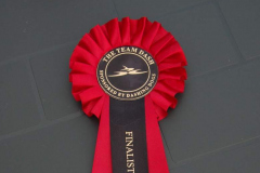 Team Dash Finalist Rosette - August 2010