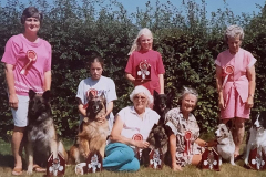 Club Team - won a mixed breed competition at the Festival of Working Dogs, Ardingley