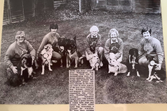 Good Citizens Demo at Crufts, 1993, Wallingford Herald