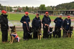 Sue and Mischief with Team GB at FMBB Czechia 2019