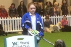 Gio-Gio and Tatti -  3rd in Crufts Junior 2014
