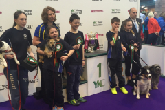 Junior Team - Crufts Winners 2016